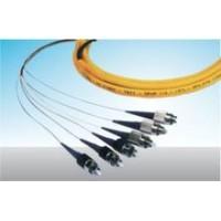 12芯束状尾纤,12芯单模束状尾纤,12芯带状尾纤