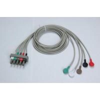 迈瑞12PIN血氧探头(PM5000)