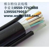 维尔特牌YR,YRP,YRF电动葫芦电缆