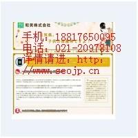 上海网络公司专业日本网站建设,日语企业网站制作