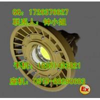 20W 防爆LED大功率投光灯 BFC8150B