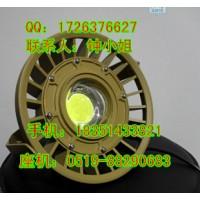 100W防爆LED大功率投光灯 BTC8180B