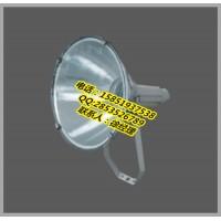 LX-GT102防水防尘防震投光灯1000w大功率防眩投光灯