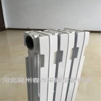 阶梯水道新艺666铸铁片 春风TXY2-6-8热水供暖散热器