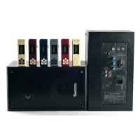 GSS2000 抗干扰数字无线电教有源音箱