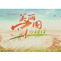 央视七套美丽中国乡村行广告费?央视七套美丽中国乡村行广告价格