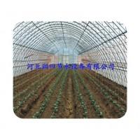 厂家直销塑料滴水管 质优价廉 安阳市滴灌带
