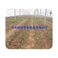 安阳市滴灌带节水灌溉 生产各种规格内镶滴灌带
