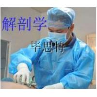 法医尸体解剖实验室设备