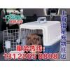 宠物托运公司信息_上海市宠物托运公司*