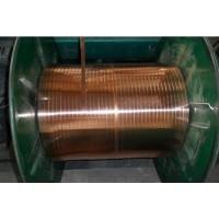嘉兴市TU1弹簧扁铜线 0.6*0.1mm弹簧扁铜线